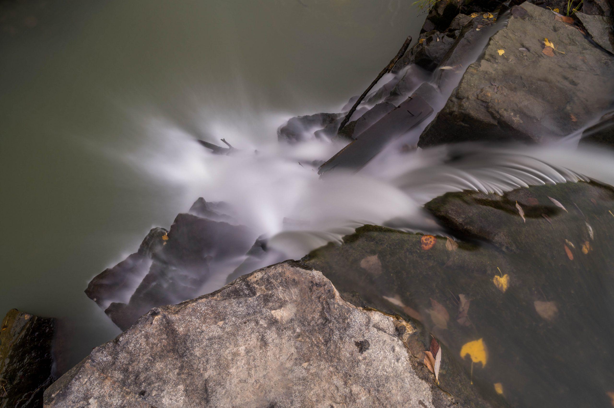 Activité: Photo de Nature (date limite de remise des photos, 22 novembre 18h.)