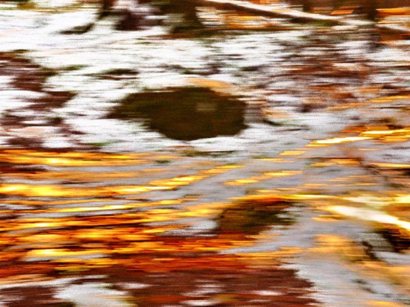 2020-11 - LabrechePierre-(Defi) - chemin d_automne